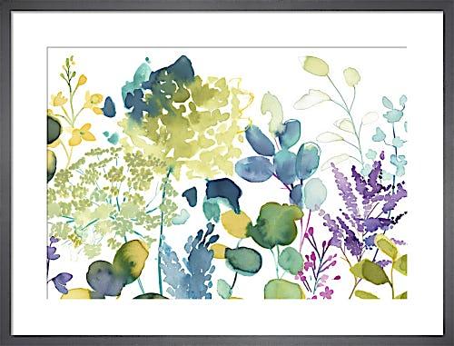 Botanical by bluebellgray