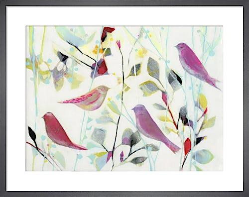 Awaken Colour by Tiffany Lynch