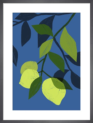 Limes by Ana Zaja Petrak