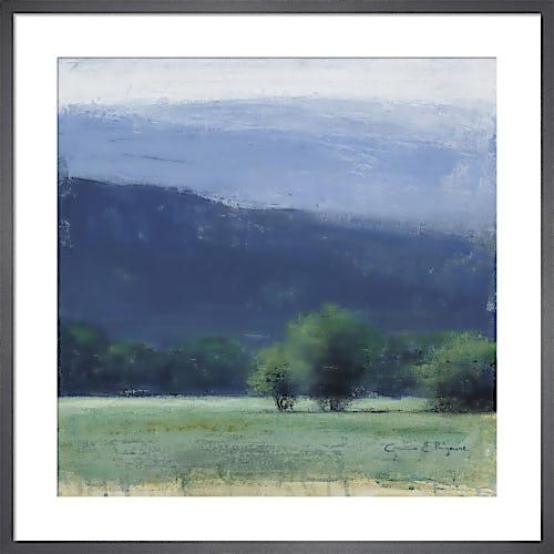 Mountain Breeze by Carina Prigmore