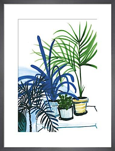 Group of Plants by Marta Chojnacka