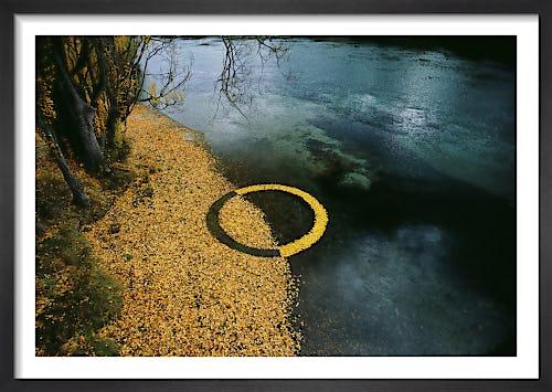 Autumn Leaf Circle by Martin Hill