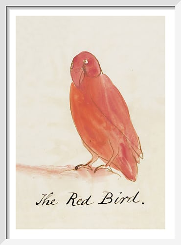 The Red Bird by Edward Lear