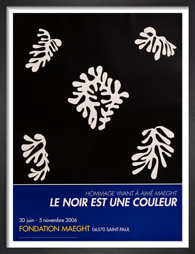 Voile de Calice Noir by Henri Matisse