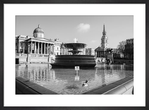 Spring Morning, Trafalgar Square by Niki Gorick