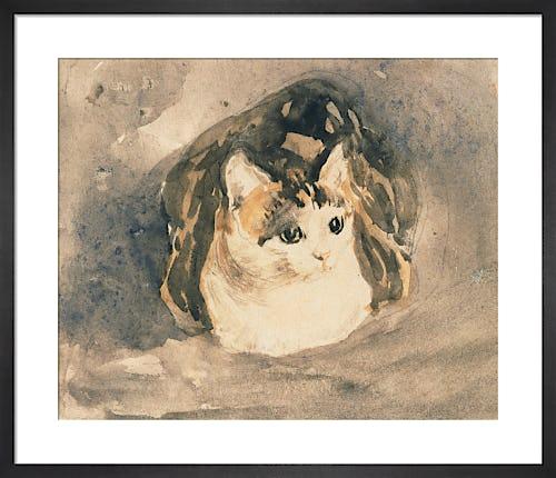 Cat, c.1904-8 by Gwen John