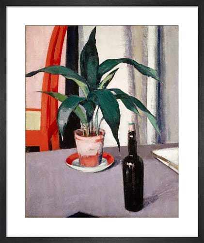 Aspidistra and Bottle on Table by F.C.B. Cadell