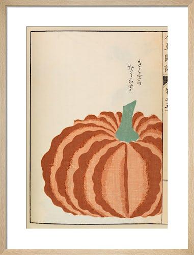 Pumpkin by Iwasaki Tsunemasa