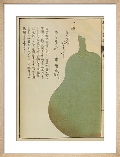 Bottle Gourd by Iwasaki Tsunemasa