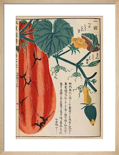 Gourd by Iwasaki Tsunemasa