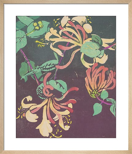 Honeysuckle by Mabel Royds