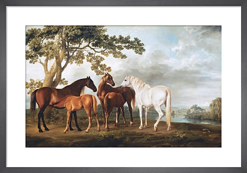 Mares and Foals in a River Landscape, c.1763-8 by George Stubbs