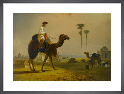 The Hirkarrah Camel (A Scene in the East Indies) by William Daniell