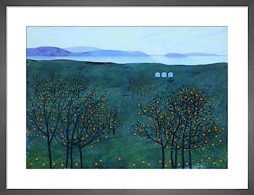 Orange Grove by Andrew Lansley