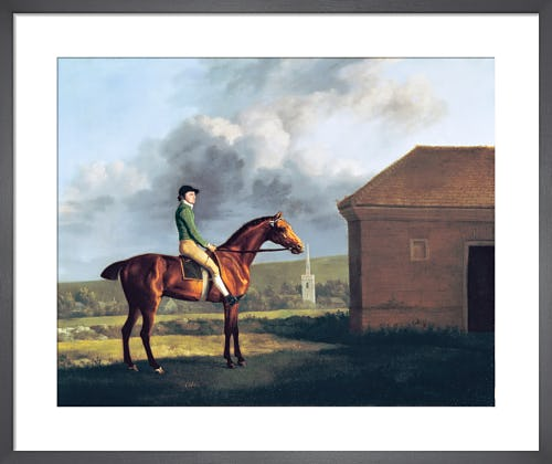 Otho, with John Larkin up, 1768 by George Stubbs
