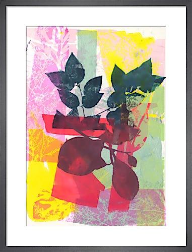 Fruity Delight by Adeline Meilliez