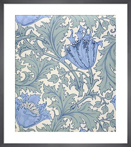 Anemone wallpaper, 1897 by J H Dearle