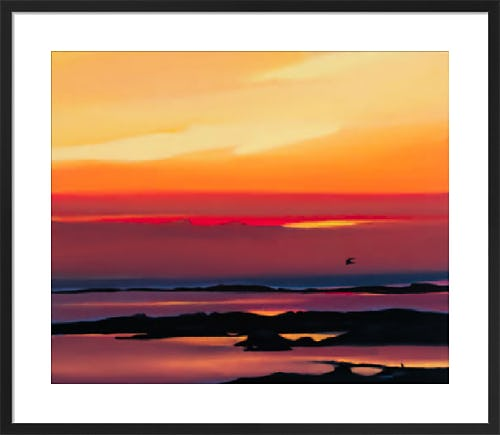 Sunset and flight by Pam Carter