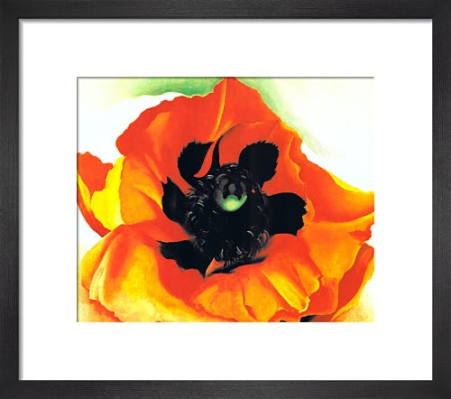 Poppy, 1927 by Georgia O'Keeffe
