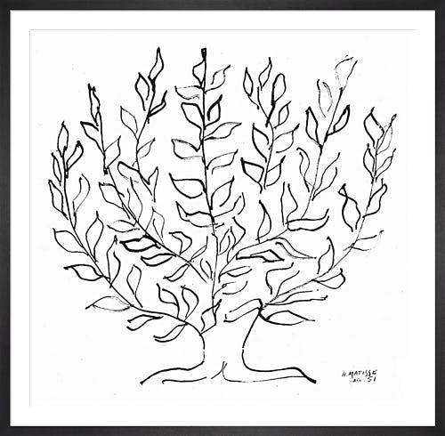 The Plane Tree 1951 by Henri Matisse